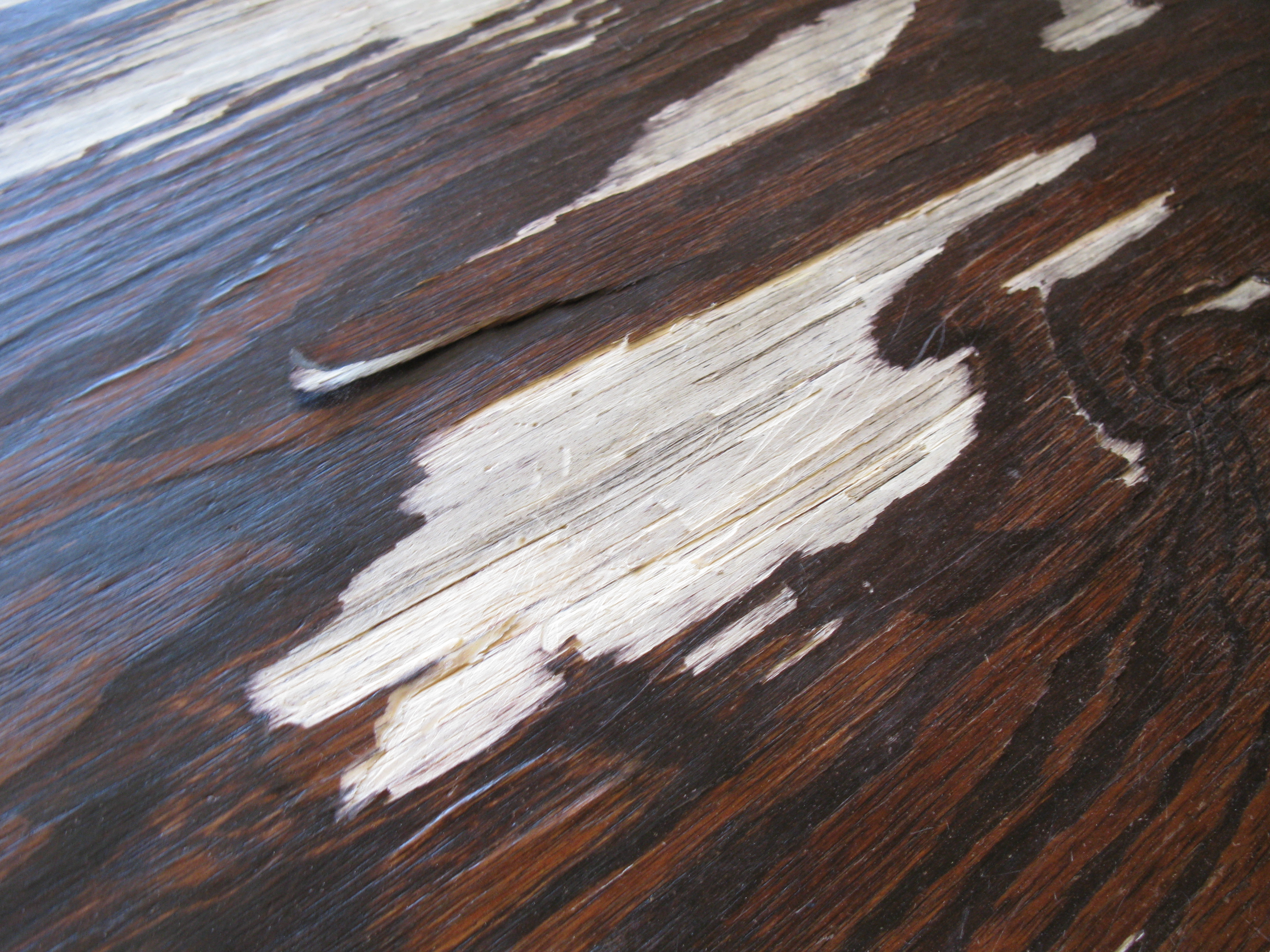 plywood-closeup-minor.jpg